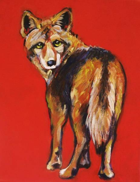 Prairie Painting - Coyote Looking Back by Carol Suzanne Niebuhr