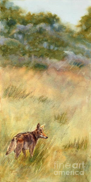 Plateau Wall Art - Painting - Coyote Santa Rosa Plateau by Bonnie Rinier
