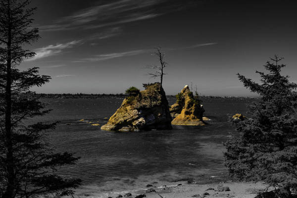 Photograph - Crab Rock by Hans Franchesco