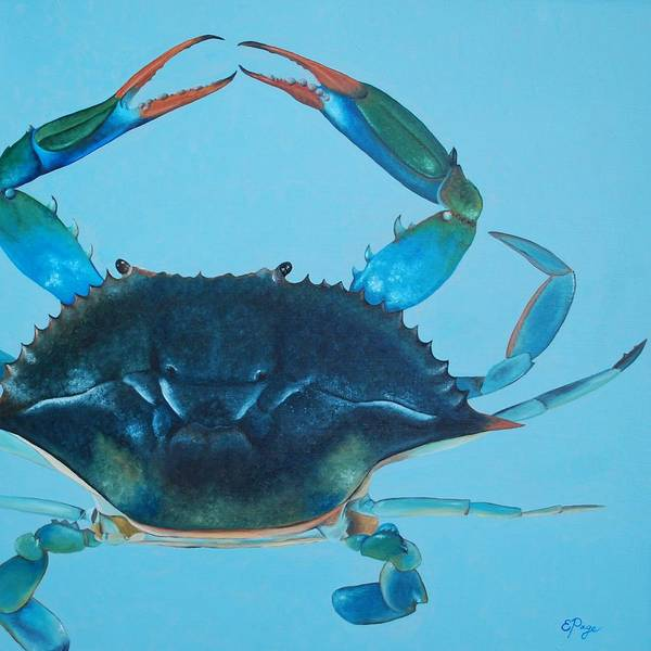 Painting - Crabby by Emily Page