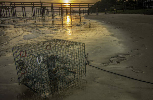 Photograph - Crabtrap At Dusk by Dorothy Cunningham