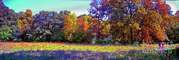 Photograph - Crabtree Conservation Fall Trail Couple by Tom Jelen