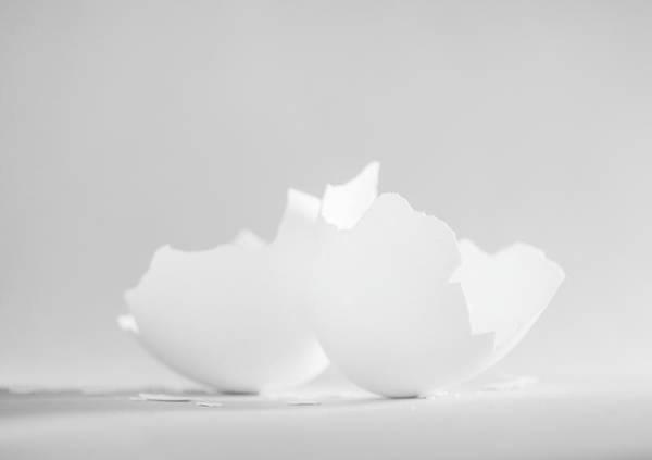 Wall Art - Photograph - Cracked Egg Shells  by Iris Richardson
