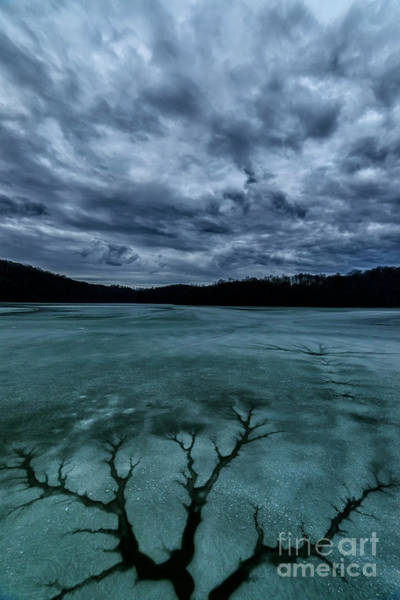 Photograph - Cracked Ice Clouds Tree Pattern by Thomas R Fletcher
