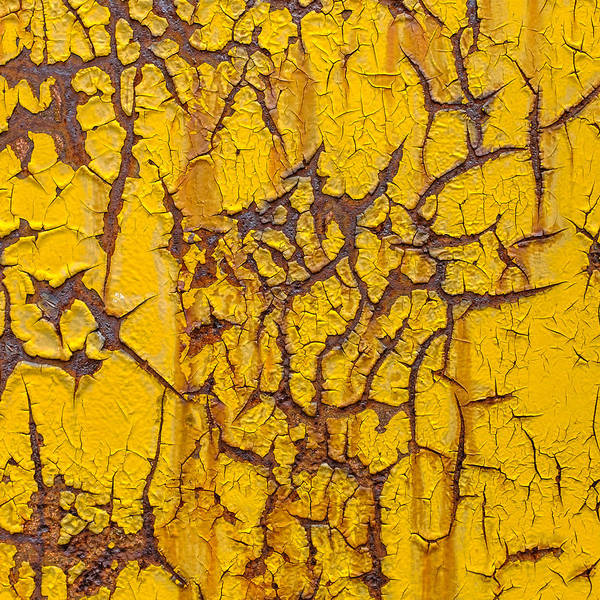 Photograph - Cracked Yellow Paint Over Rust - Square by Chris Bordeleau