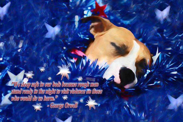 Photograph - Cradled By A Blanket Of Stars And Stripes - Quote by Shelley Neff