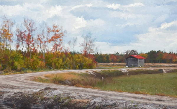Digital Art - Cranberry Bog by Jim Cook