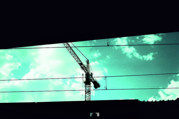 Photograph - Crane And Shadows by Nacho Vega