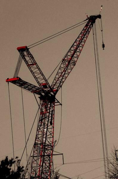 Photograph - Crane's Up by Buddy Scott