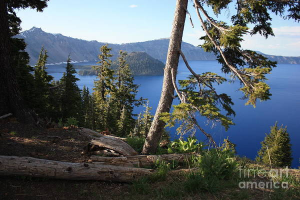 Photograph - Crater Lake 9 by Carol Groenen