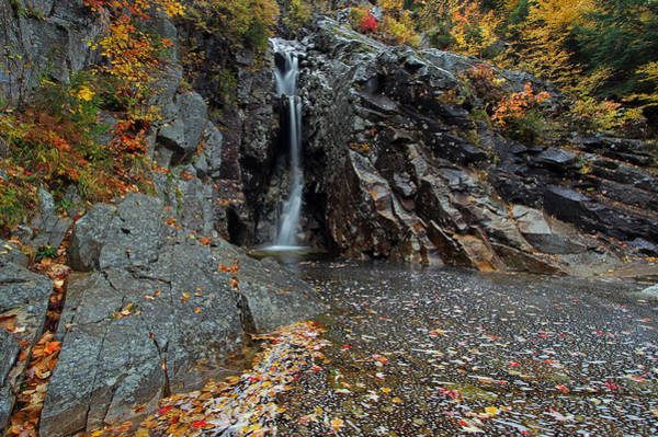 Photograph - Crawford Notch State Park,  by Juergen Roth