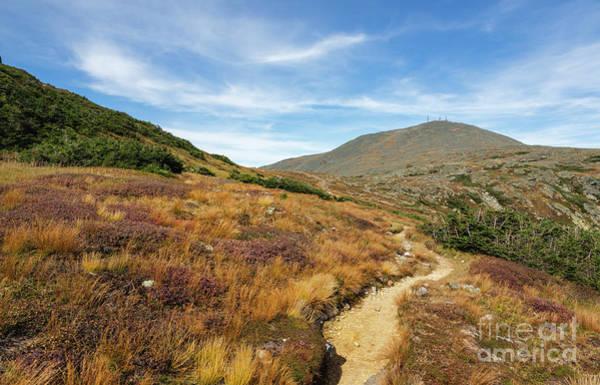 Photograph - Crawford Path - Mt Washington New Hampshire by Erin Paul Donovan