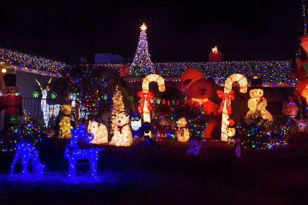 Photograph - Crazy Christmas Lights 3  by Bonnie Follett