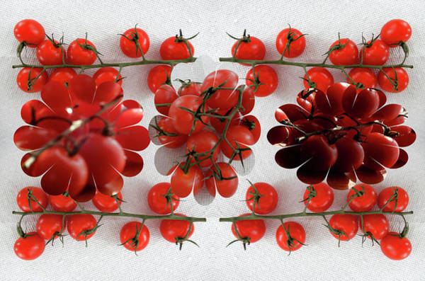 Photograph - Creative Cherry Tomatoes by Tina M Wenger