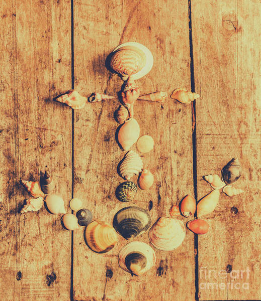 Photograph - Creative Maritime Anchor Made Of Seashells by Jorgo Photography - Wall Art Gallery