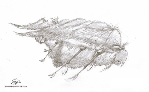 Drawing - Creature 2 by Steven Powers SMP