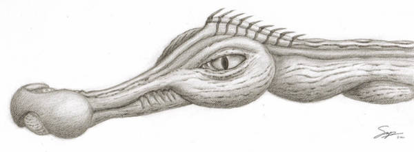Drawing - Creature Eyes -3 by Steven Powers SMP