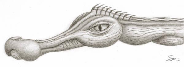 Creature Eyes -3 Art Print