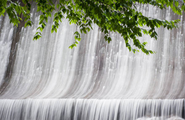 Photograph - Creek 4 by Joye Ardyn Durham