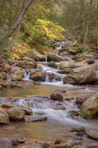Photograph - Creek 6 by Joye Ardyn Durham