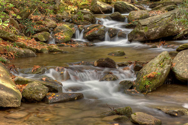 Photograph - Creek 7 by Joye Ardyn Durham