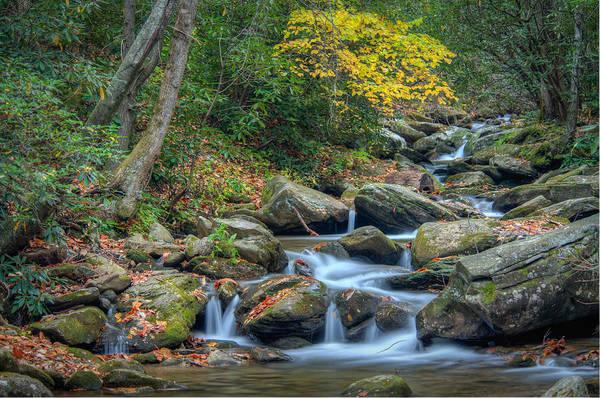 Photograph - Creek 9 by Joye Ardyn Durham