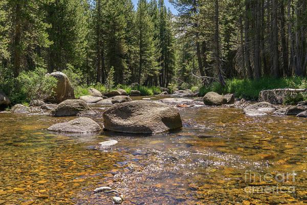 Photograph - Creek Along Tioga Pass Yosemite California Dsc04306 by Wingsdomain Art and Photography