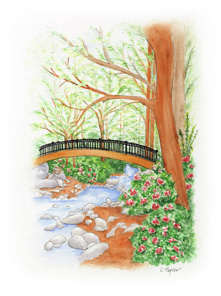 Painting - Creek Crossing by Lori Taylor