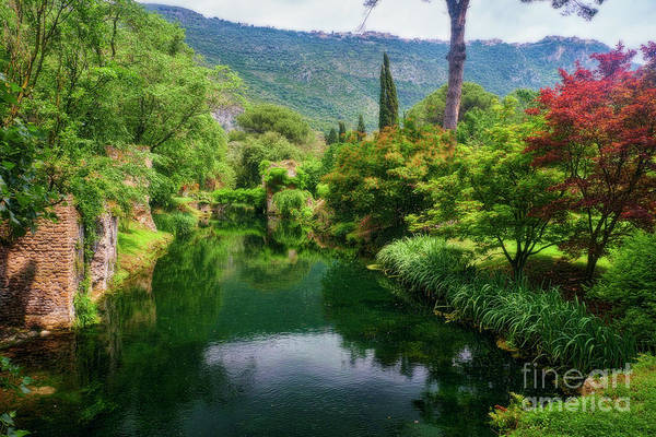 Wall Art - Photograph - Creek In A Garden With Historic Ruins by George Oze