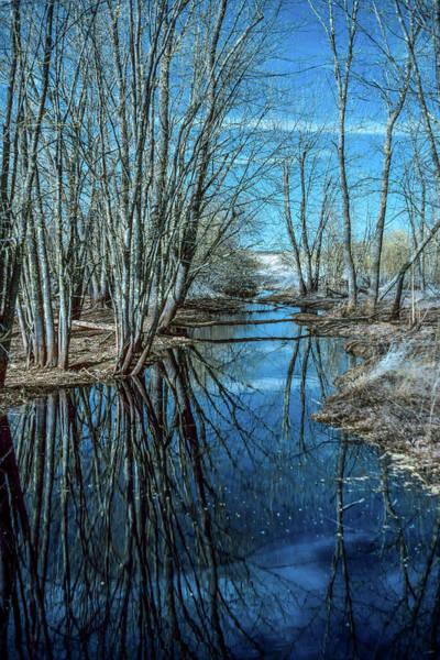 Wall Art - Photograph - Creek Reflections by Paul Freidlund