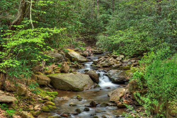 Photograph - Creek11 by Joye Ardyn Durham