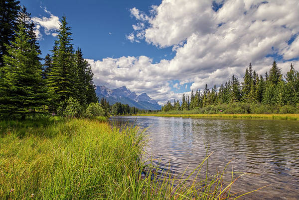 Canmore Wall Art - Photograph - Creekside Canmore Alberta by Joan Carroll