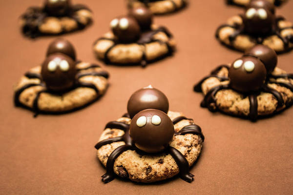 Chocolate Wall Art - Photograph - Creepy Crawly Spider Bites. Halloween Food by Jorgo Photography - Wall Art Gallery