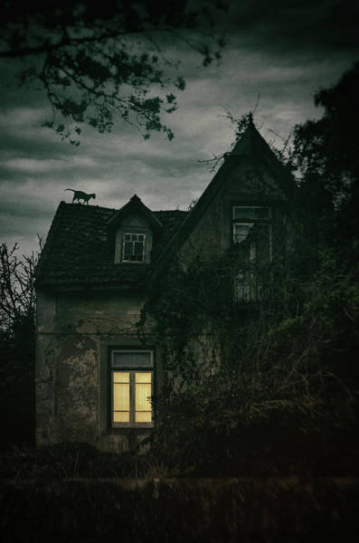 Wall Art - Photograph - Creepy House With Cat by Carlos Caetano