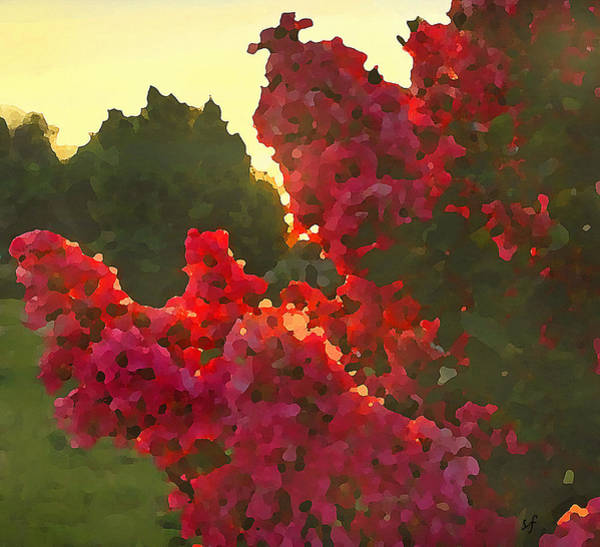 Digital Art - Crepe Myrtle In The Morning by Shelli Fitzpatrick