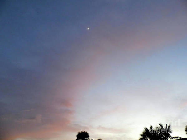 Photograph - Crescent Moon At Sunset by D Hackett