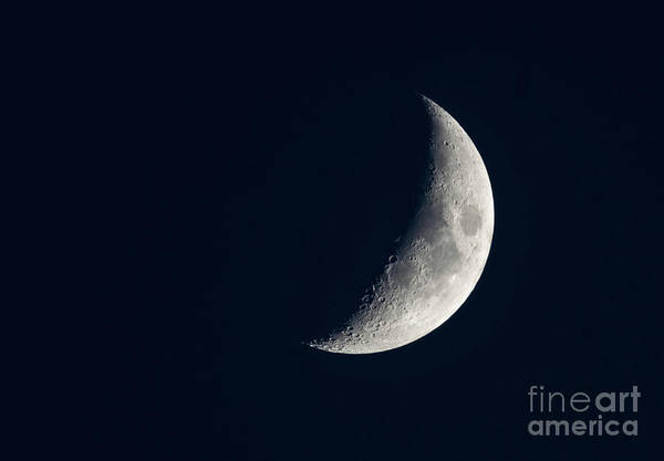 First Star Photograph - Crescent Moon by DiFigiano Photography