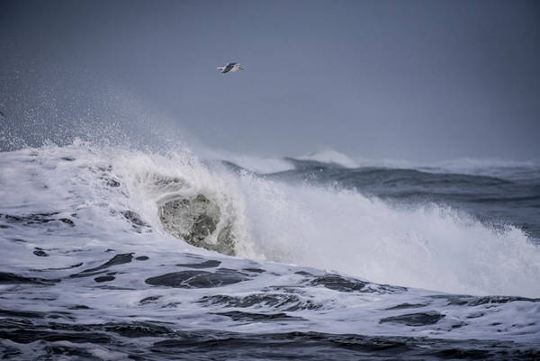 Photograph - Crest Of A Wave by Robert Potts