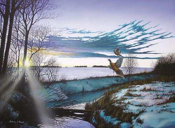 Ditch Painting - Crisp Winter Light by Anthony J Padgett