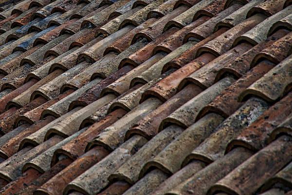 Croatian Roof Tiles Art Print