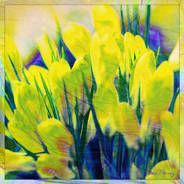 Digital Art - Crocus by Barbara Berney