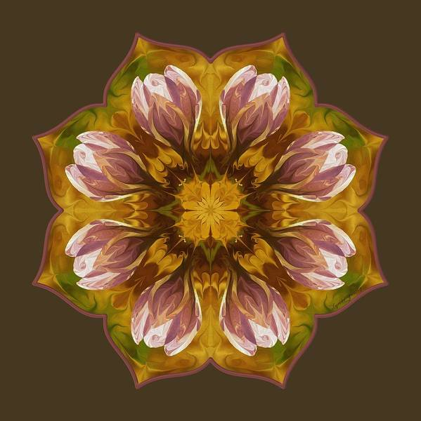Digital Art - Crocus by Lynde Young