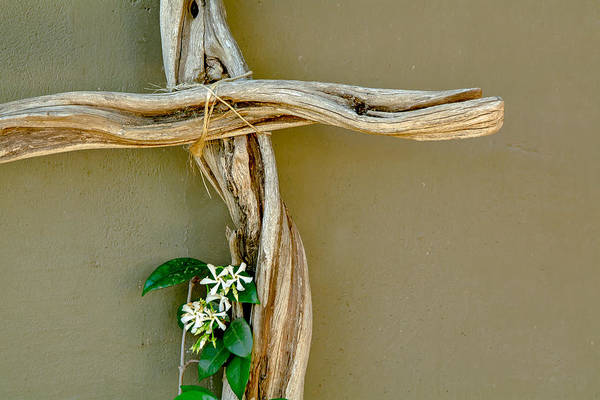 Photograph - Crooked Cross by Tam Ryan