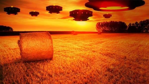 Area 51 Digital Art - Crop Circle Makers By Raphael Terra by Raphael Terra
