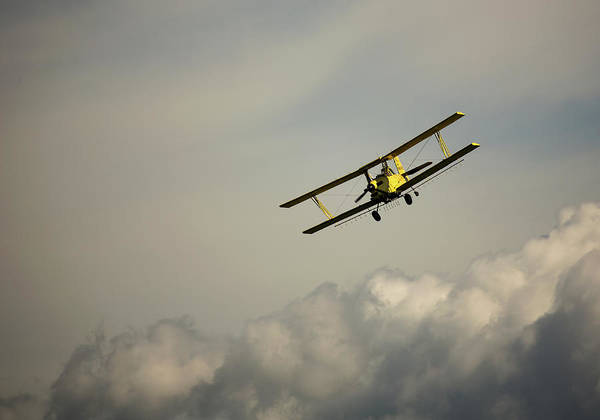 Photograph - Crop Duster by Bob Cournoyer