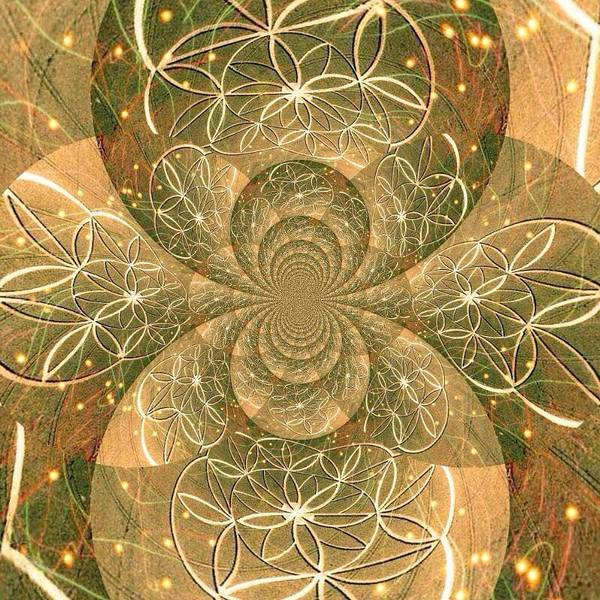 Digital Art - Crop Of Life II by Karen Buford