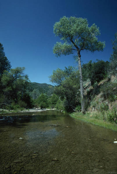 San Rafael Wilderness Photograph - Crossing Over  by Soli Deo Gloria Wilderness And Wildlife Photography