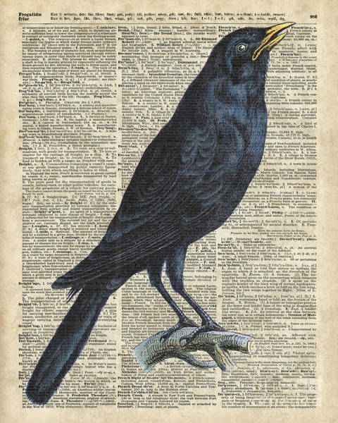 Wall Art - Painting - Crow On Dictionary Book Page by Anna W