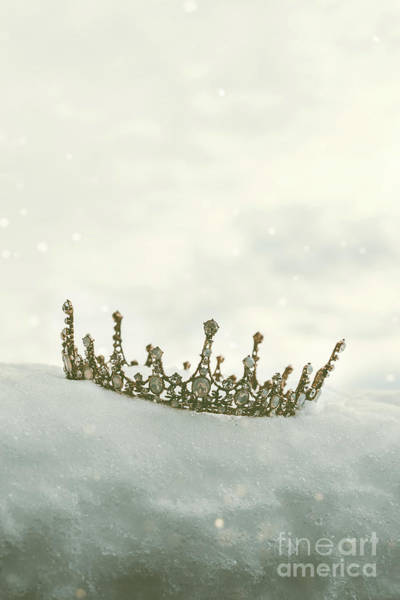 Wall Art - Photograph - Crown In The Snow by Amanda Elwell