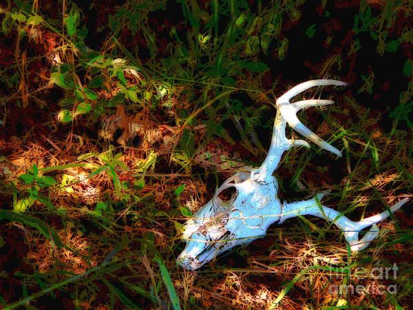 Deer Skull Digital Art - Crown Of A Fallen Prince by Bryan Atneosen